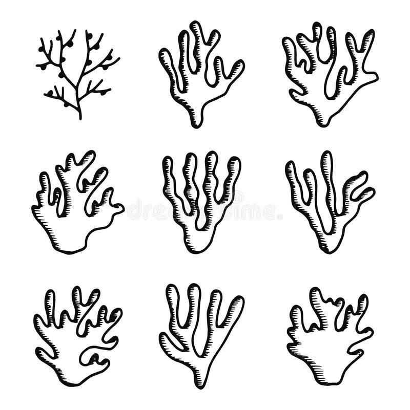 Sistema de los iconos de las algas siluetas aisladas de los objetos stock de ilustración