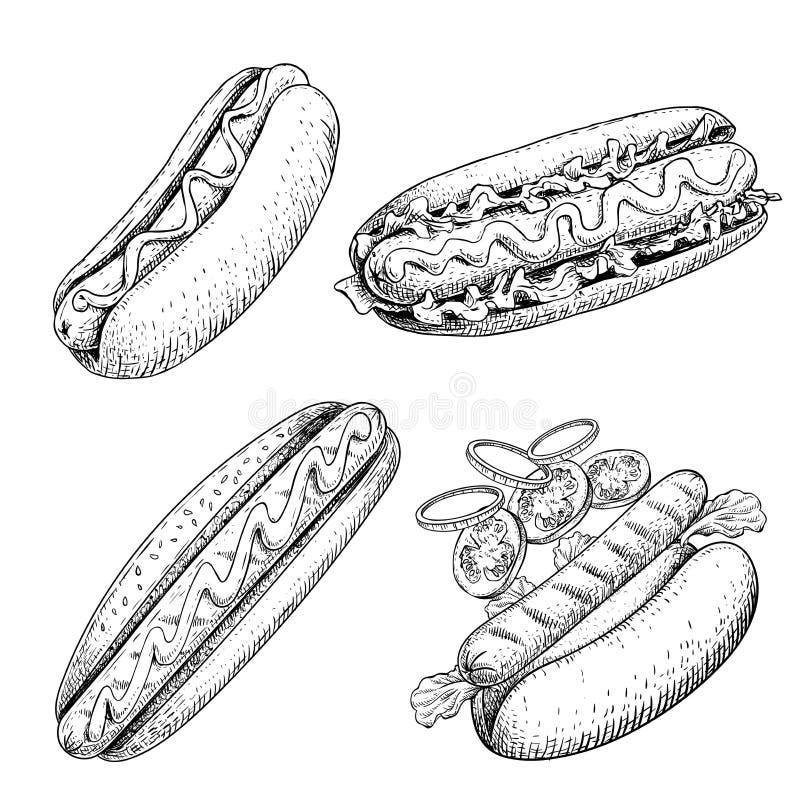 Sistema de los perritos calientes Ejemplo dibujado mano del estilo del bosquejo Alimentos de preparaci?n r?pida Constructor del p ilustración del vector