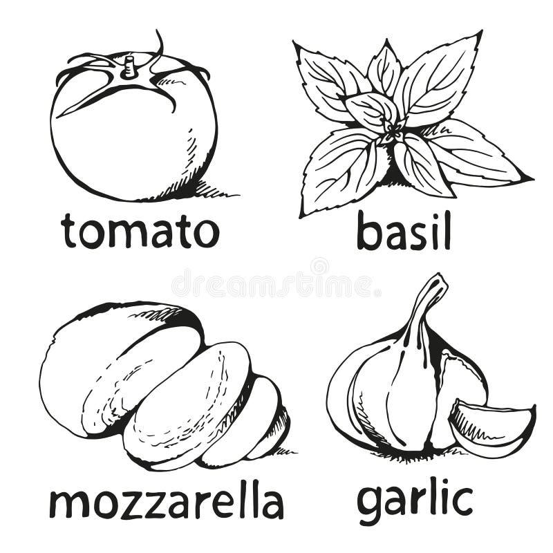 Sistema de Margherita de la pizza aislado en el fondo blanco stock de ilustración
