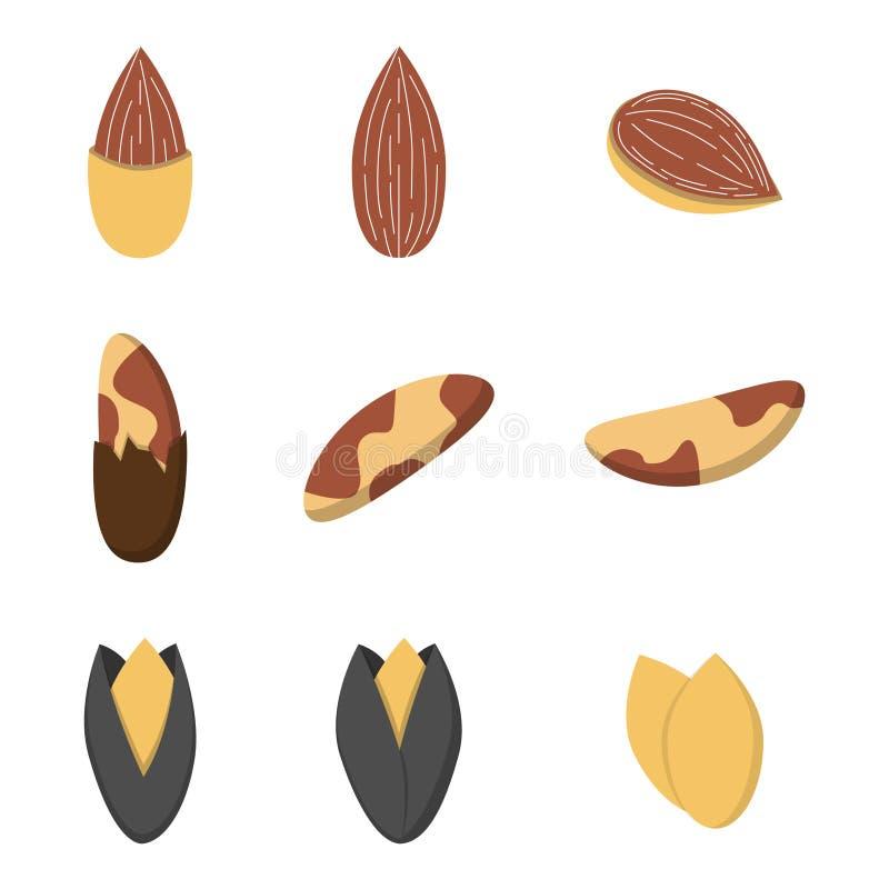 Sistema de nueces en estilo plano libre illustration