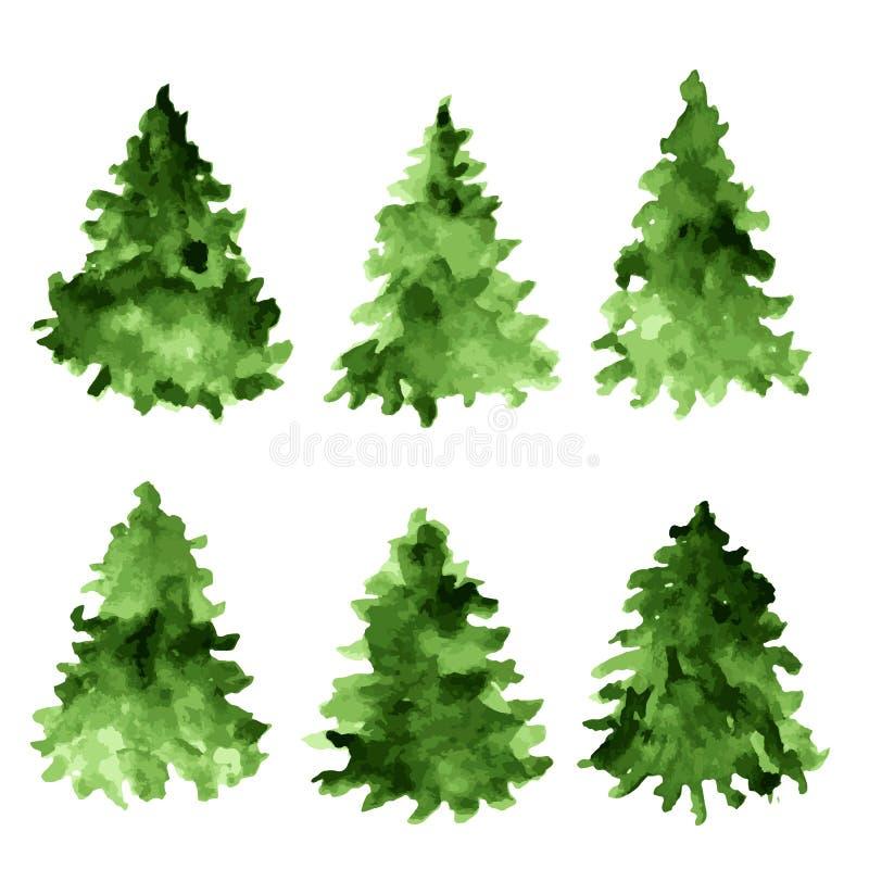 Sistema de piceas verdes de la acuarela Colección del árbol de abeto libre illustration
