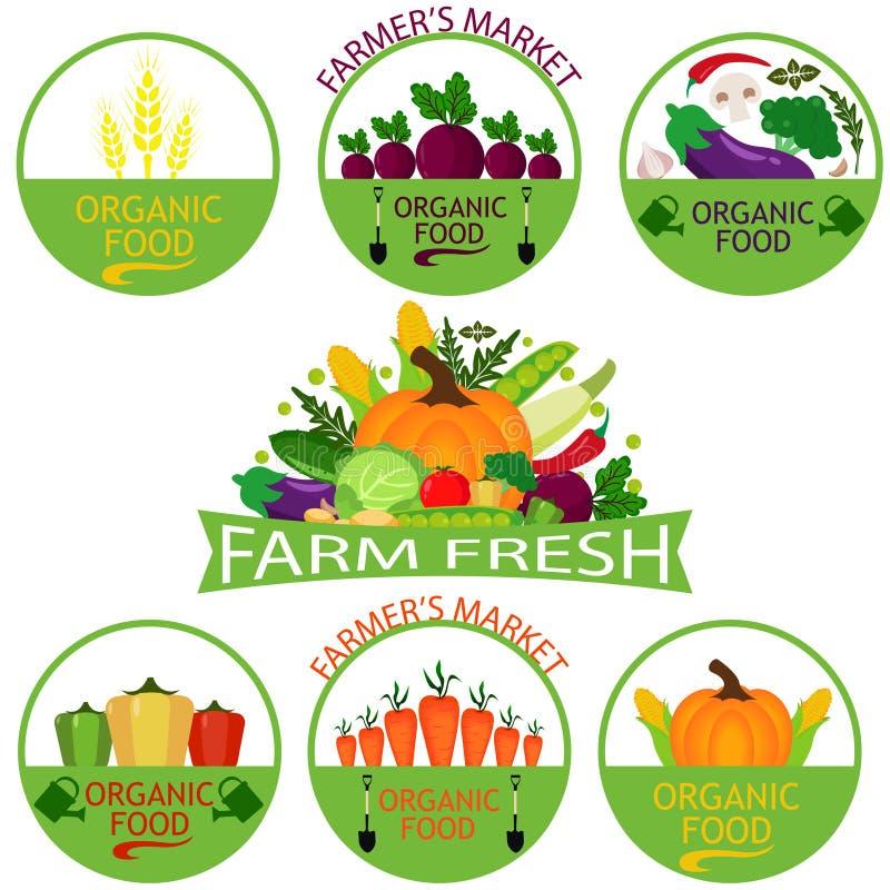 Sistema de plantillas del logotipo de las verduras stock de ilustración