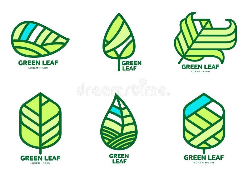 Sistema de plantillas verdes del logotipo de la hoja, ejemplo del vector stock de ilustración