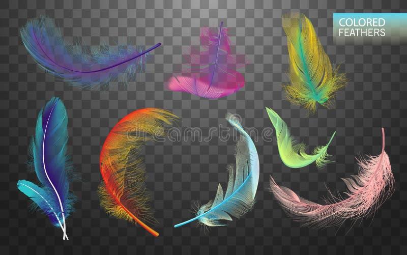 Sistema de plumas giradas mullidas coloreadas que caen aisladas en fondo transparente en estilo realista Lindo ligero ilustración del vector