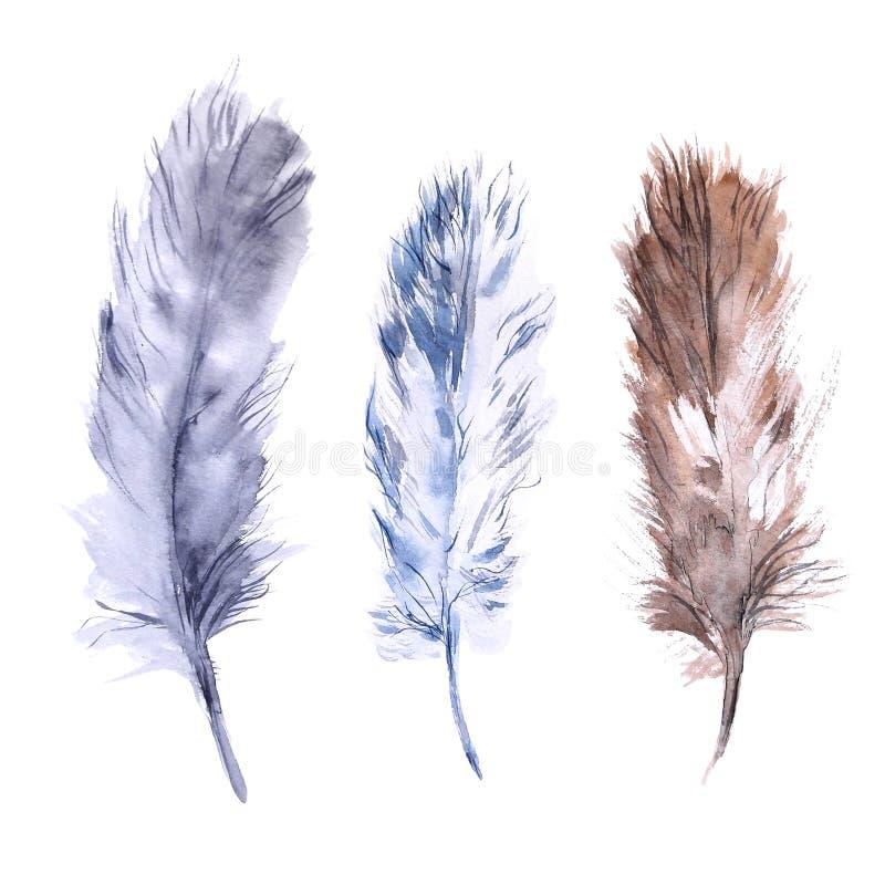 Sistema de plumas de la acuarela Elementos pintados a mano aislados en blanco stock de ilustración