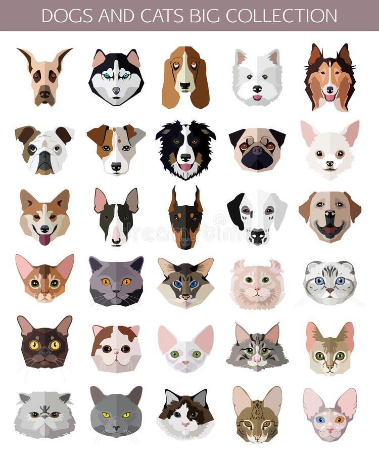 Sistema de razas populares planas de los iconos de los gatos y de los perros stock de ilustración