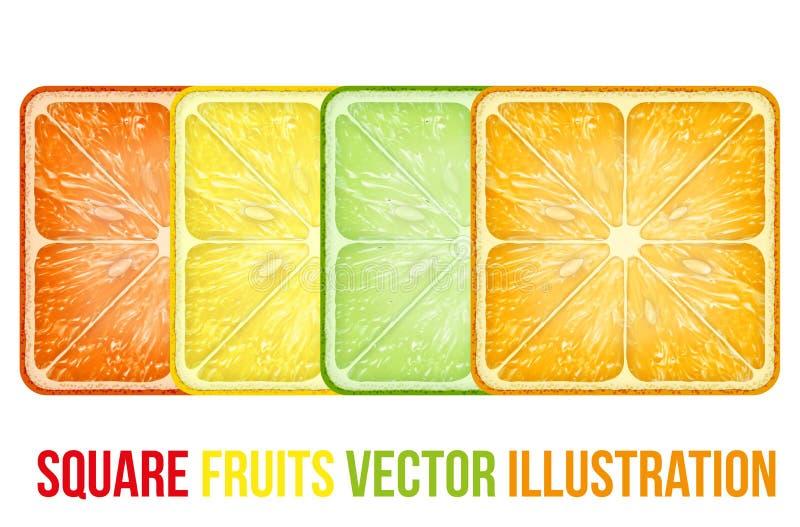 Sistema de rebanadas cuadradas de las frutas de los iconos Vector libre illustration