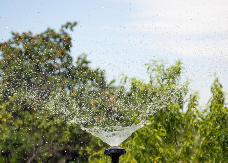 Sistema de riego del césped Irrigaci?n de la hierba verde Regadera para el jardín Descensos del agua imagen de archivo libre de regalías