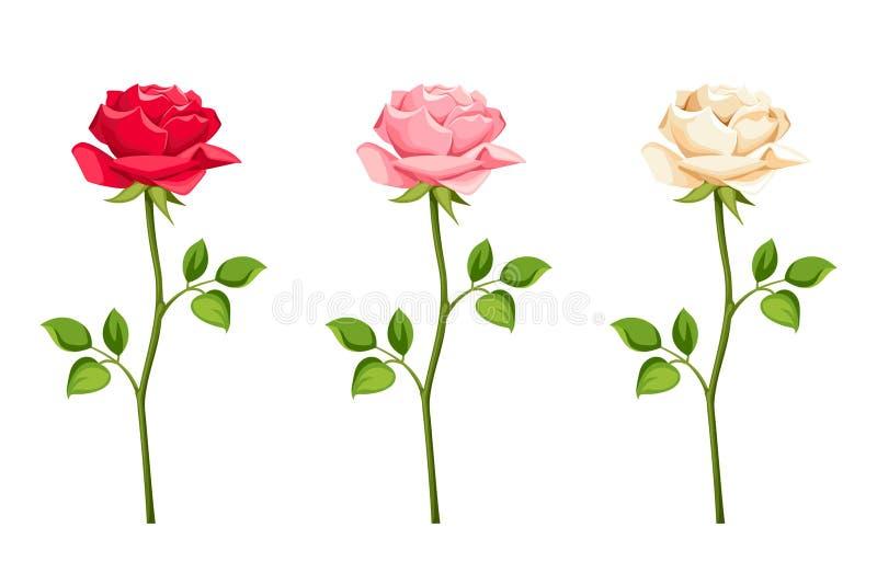 Sistema de rosas rojas, rosadas y blancas con los troncos Ilustración del vector libre illustration
