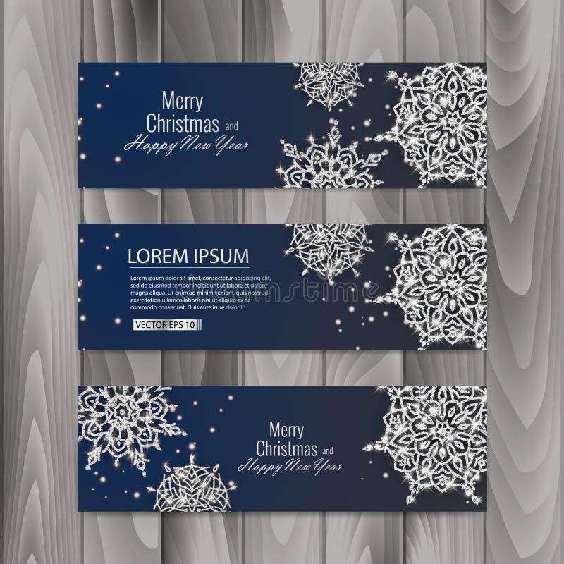 Sistema de tarjeta del vale de regalo de la Navidad Plantilla con los copos de nieve brillantes Ilustración del vector libre illustration