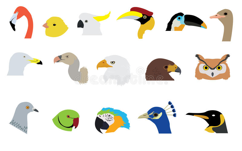 Sistema de vectores y de iconos de los pájaros stock de ilustración