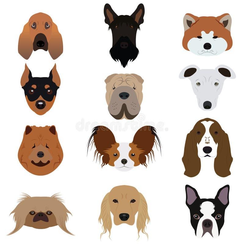 Sistema de vectores y de iconos del perro libre illustration