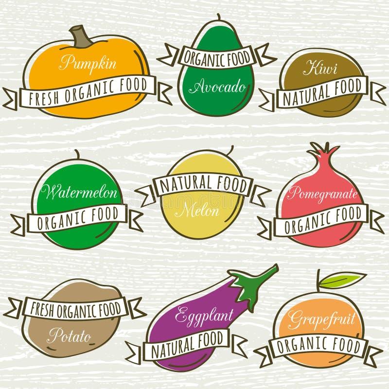 Sistema de verdura y de fruta orgánicas, vector ilustración del vector