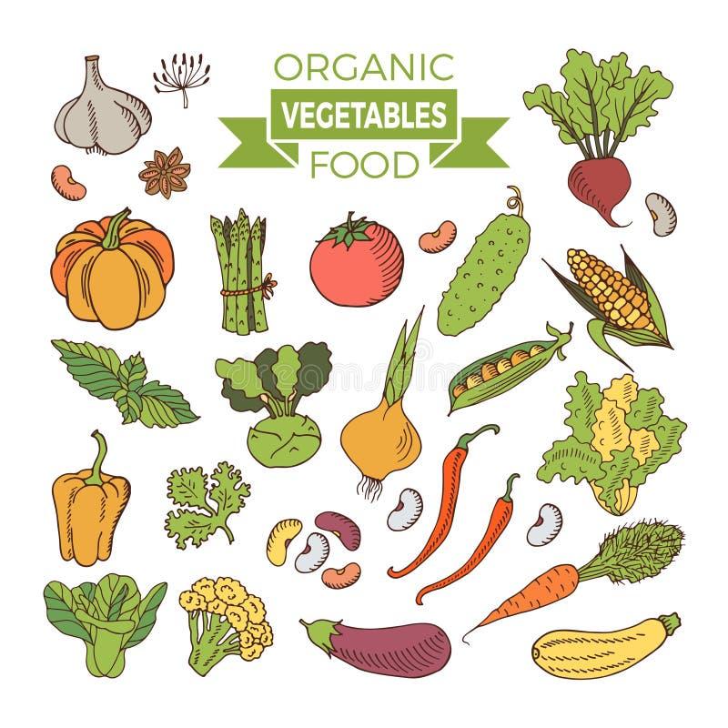 Sistema de verduras coloreadas libre illustration