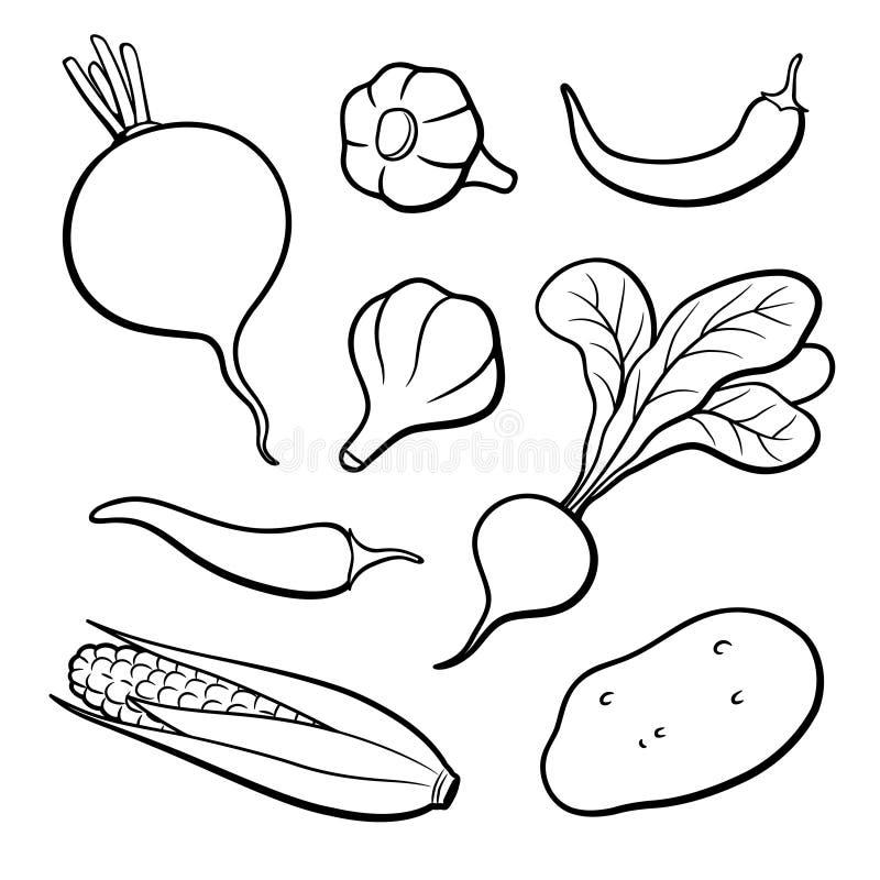 Sistema de verduras del vector del esquema stock de ilustración