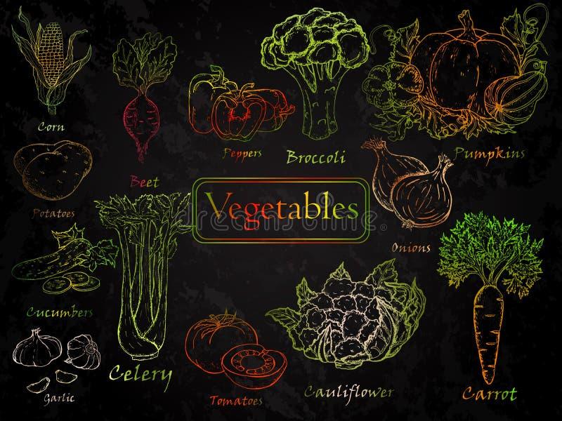 Sistema de verduras a mano stock de ilustración