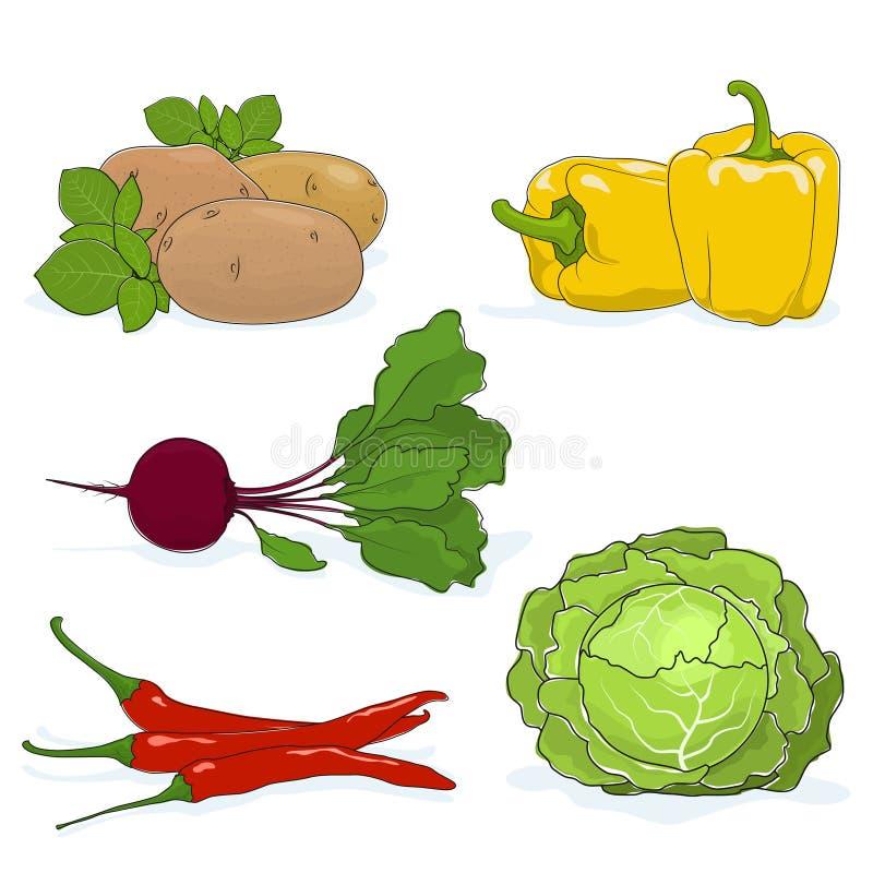 Sistema de verduras que cultivan un huerto libre illustration