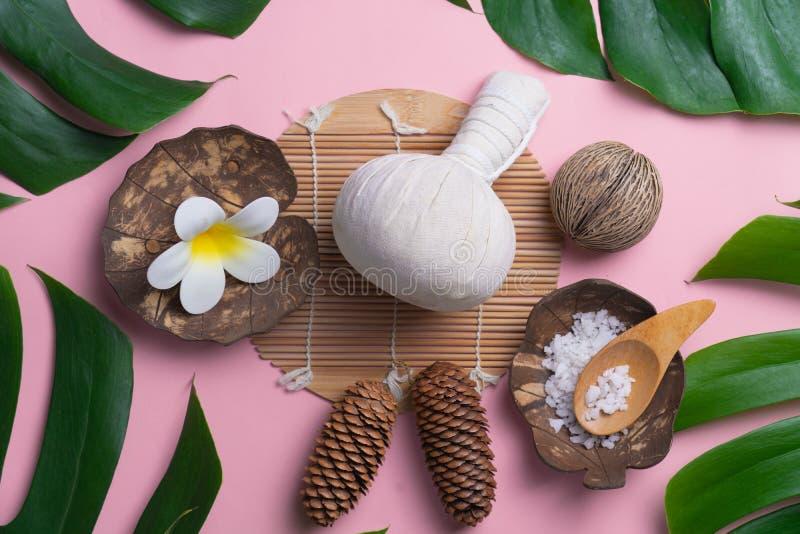 Sistema del balneario del producto del Aromatherapy, composición plana de la endecha Le tropical fotografía de archivo libre de regalías