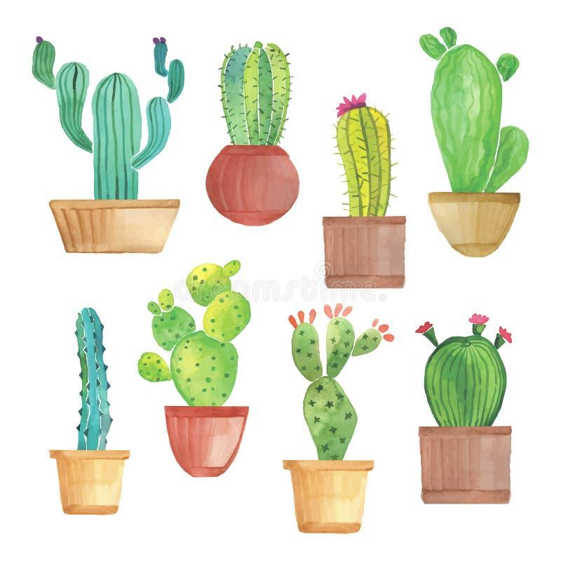 Sistema del cactus de la acuarela ilustración del vector