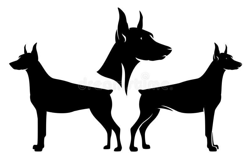 Sistema del diseño del vector del negro del perro guardián del Doberman ilustración del vector