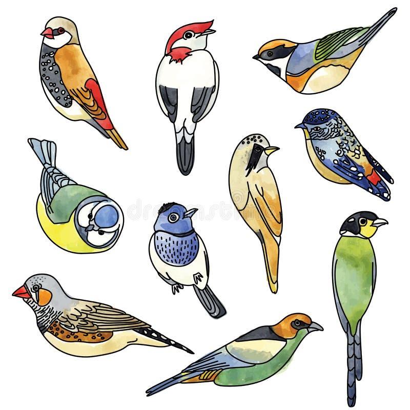 Sistema del ejemplo del vector de pájaros Gráfico de la acuarela foto de archivo libre de regalías