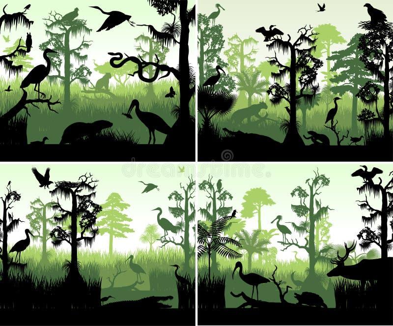 Sistema del humedal de la selva tropical del vector en plantilla del diseño de la puesta del sol con los animales libre illustration