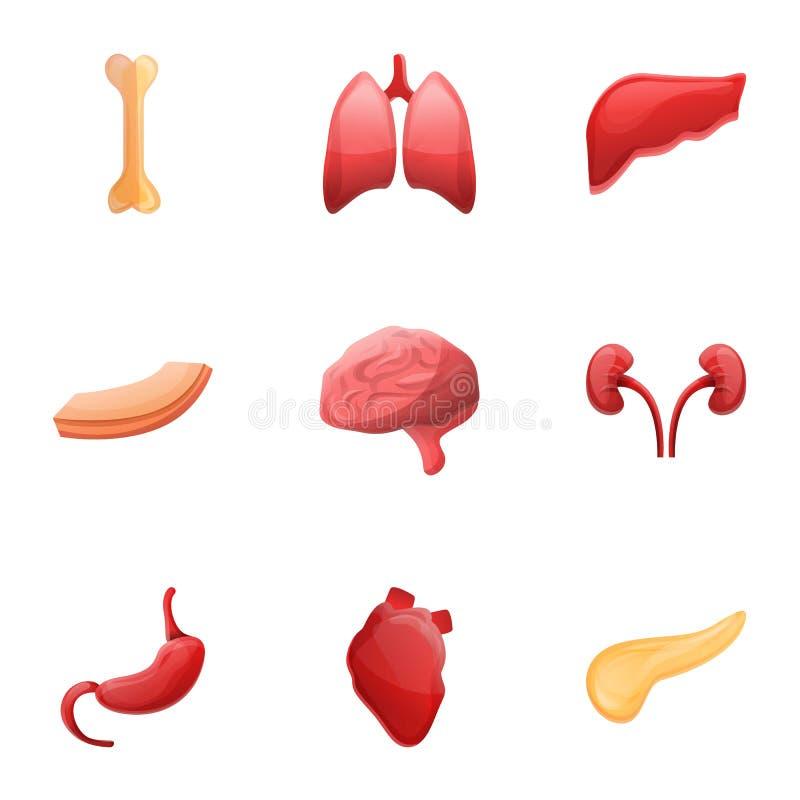 Sistema del icono de la anatomía de los órganos humanos, estilo de la historieta stock de ilustración