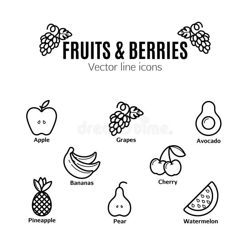 Sistema del icono de la fruta y de las bayas Pictogramas naturales del vegano bio , plátanos, uvas, aguacate, sandía y otras mues ilustración del vector