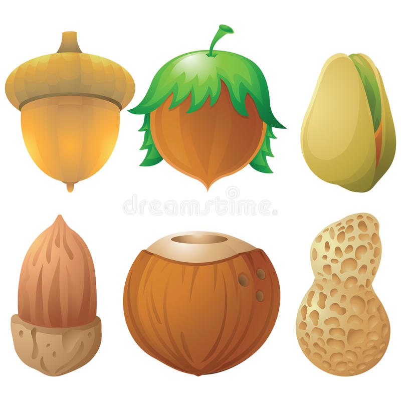 Sistema del icono de las nueces y de las semillas ilustración del vector