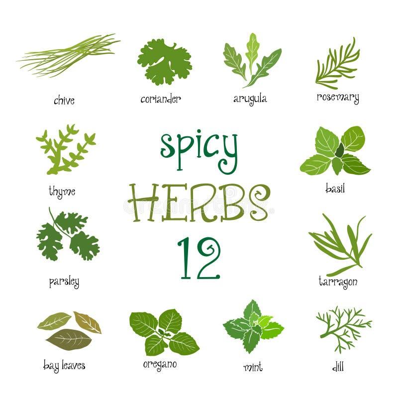 Sistema del icono del web de diversas hierbas picantes ilustración del vector