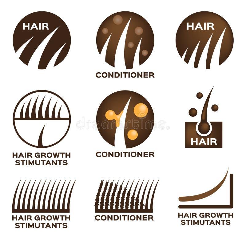 Sistema del logotipo del pelo ilustración del vector