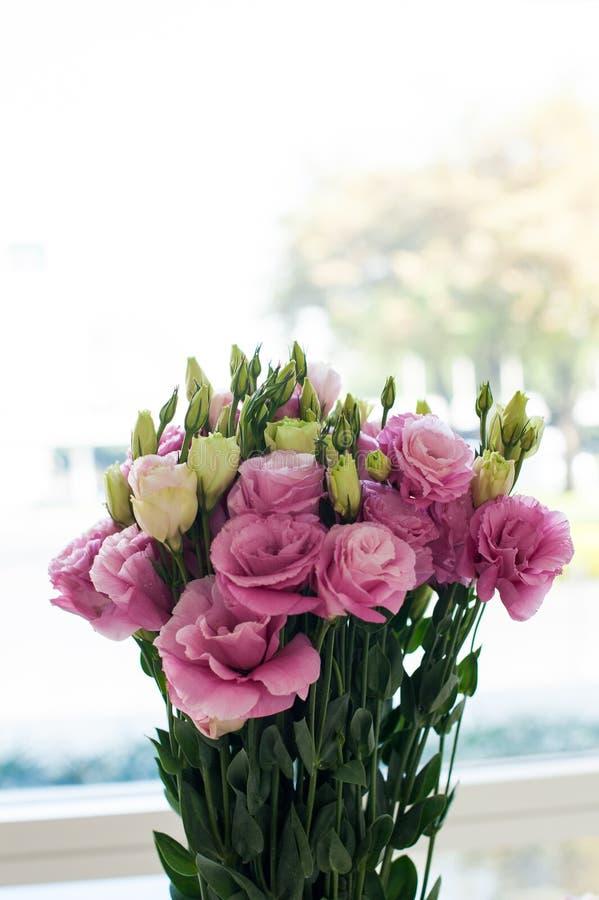 Sistema del manojo de las rosas rosadas y blancas fotografía de archivo