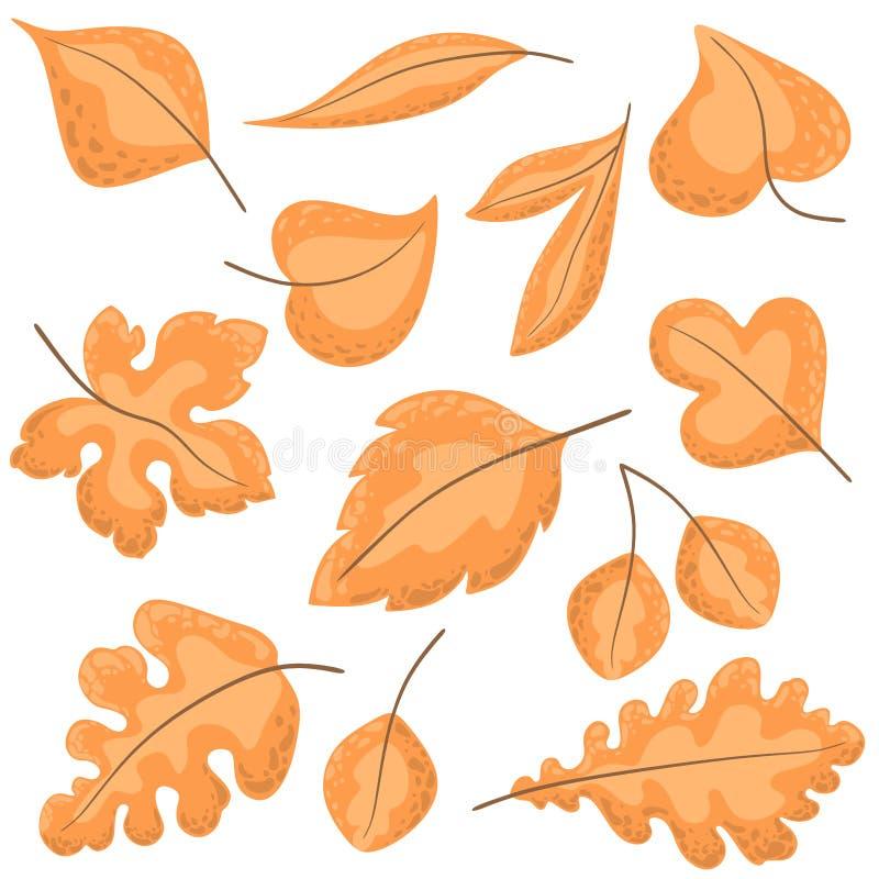 Sistema del otoño de hojas en estilo de la historieta El vector a?sla en un fondo blanco libre illustration