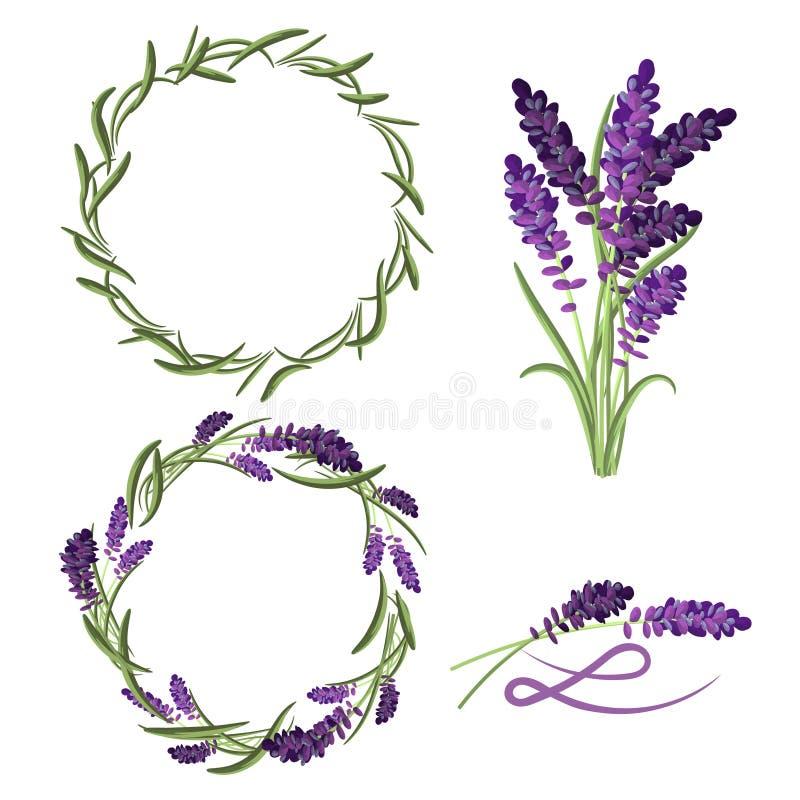 Sistema del ramo de la flor de la lavanda de Provence stock de ilustración