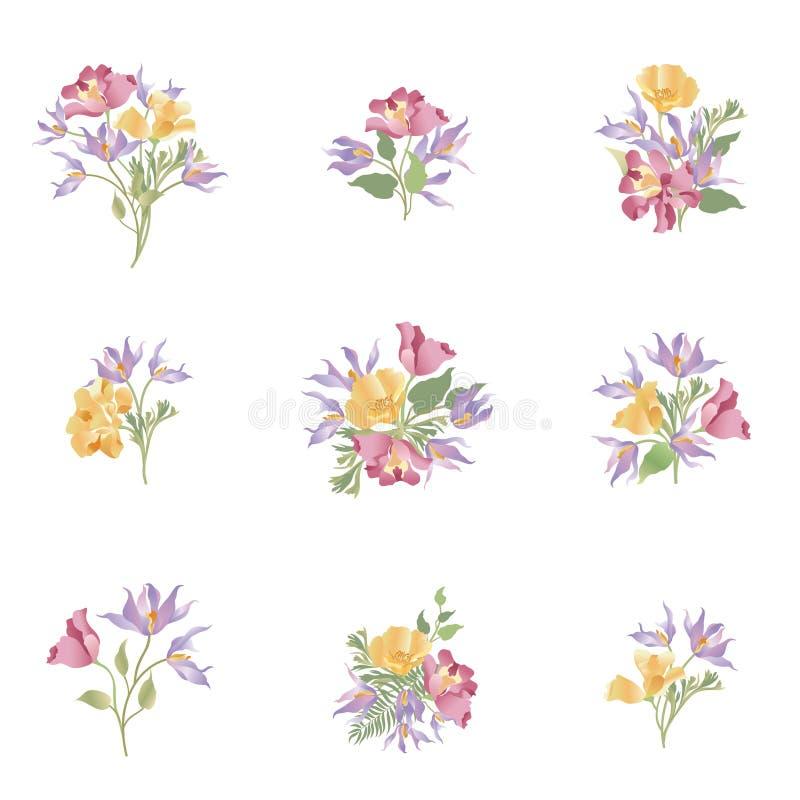 Sistema Del Ramo De La Flor Diseño Floral Del Marco Tarjeta De ...