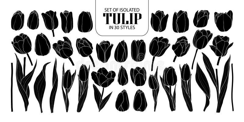 Sistema del tulipán aislado de la silueta en 30 estilos F dibujada mano linda stock de ilustración