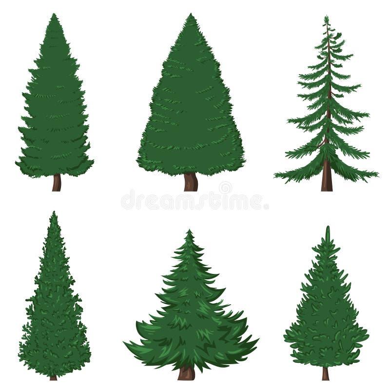 Sistema del vector de árboles de pino de la historieta en el fondo blanco stock de ilustración