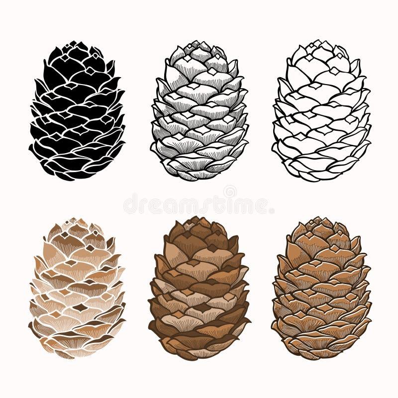 Sistema del vector de conos del pino en un fondo blanco libre illustration