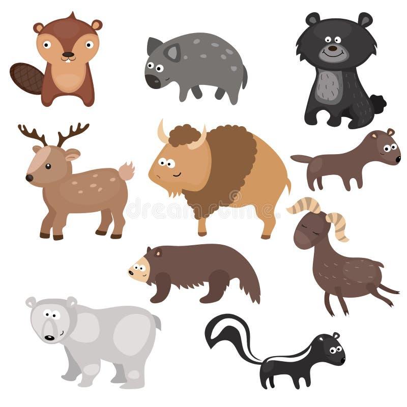 Sistema del vector de diversos animales de Norteamérica ilustración del vector