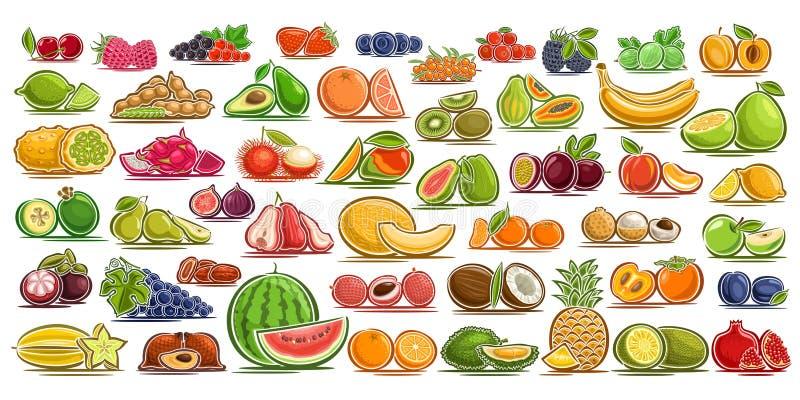 Sistema del vector de frutas frescas y de bayas stock de ilustración
