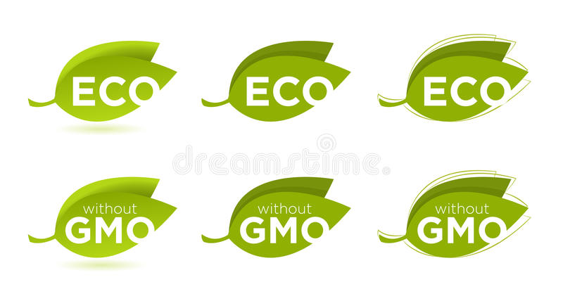 Sistema del vector de hojas con el texto de Eco ilustración del vector