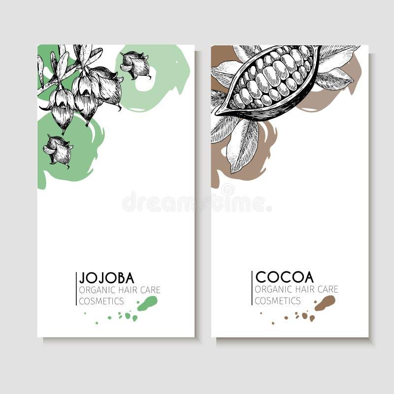 Sistema del vector de ingredientes del cuidado del cabello Elementos dibujados mano orgánica Aviadores con la jojoba y el cacao ilustración del vector