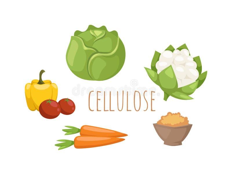 Sistema del vector de la celulosa de la comida de las verduras ilustración del vector
