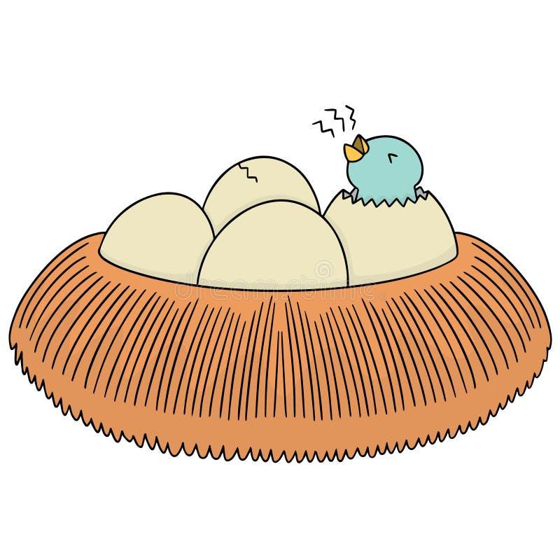 Sistema del vector de la jerarquía y del huevo del pájaro libre illustration