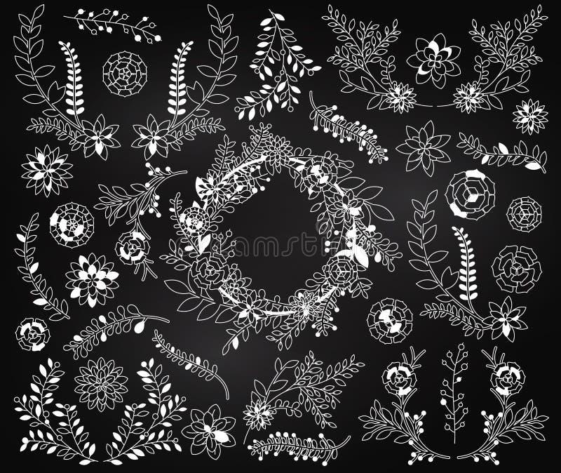 Sistema del vector de la pizarra de plantas suculentas detalladas y de la guirnalda suculenta ilustración del vector