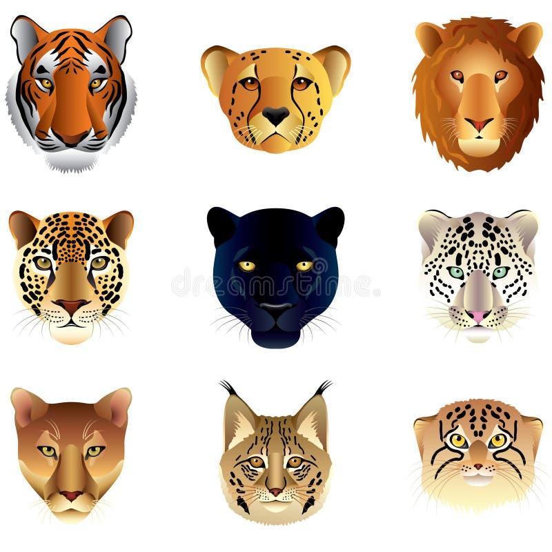 Sistema del vector de las cabezas de los gatos grandes libre illustration