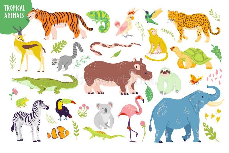 Sistema del vector de los animales tropicales exhaustos de la mano plana, pájaros, reptiles, plantas aisladas en el fondo blanco: ilustración del vector