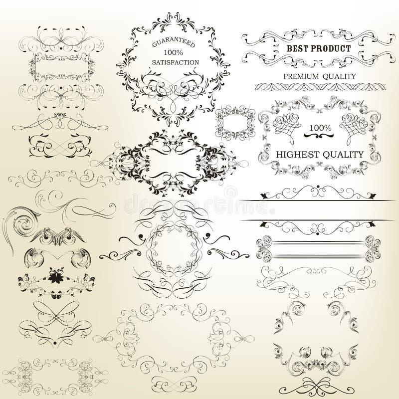 Download Sistema Del Vector De Los Elementos Caligráficos Para El Diseño Vec Caligráfico Ilustración del Vector - Ilustración de prospere, ilustración: 64210483