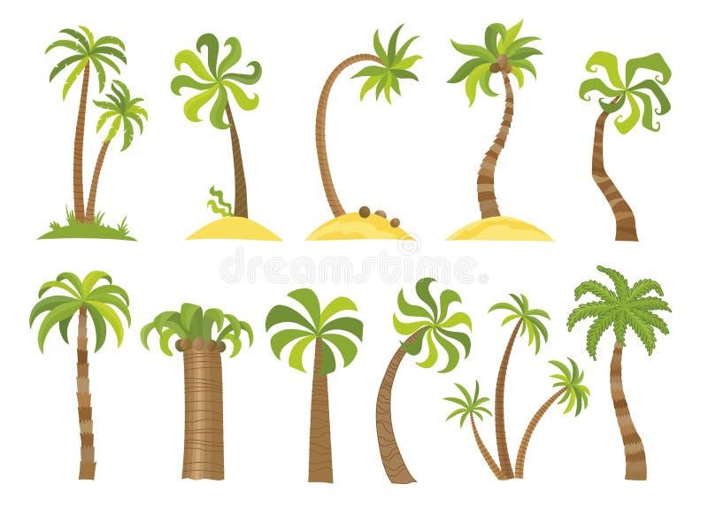 Sistema del vector de palmeras simples Palmas planas de la historieta en el fondo blanco libre illustration