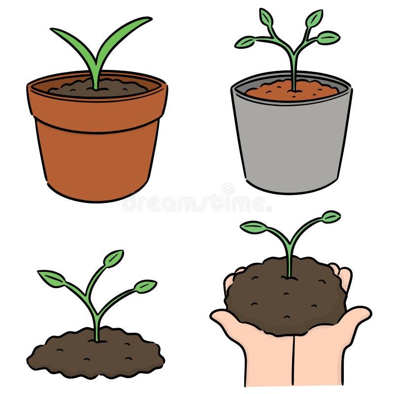 Sistema del vector de plantar el ?rbol ilustración del vector